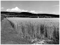 A45 - Blickrichtung Alzenau